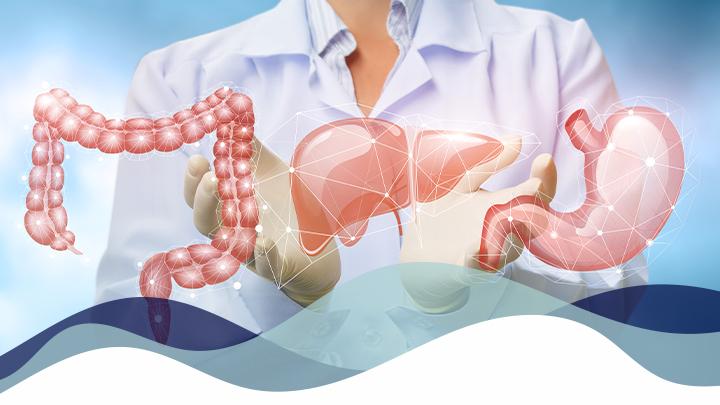Gastro-enterologie et hepatologie